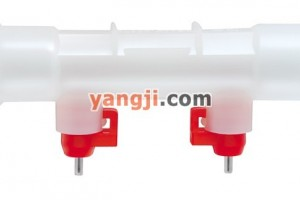 25mm蛋鸡专用球阀式双乳头饮水器