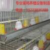 【供】蛋鸡笼、育雏鸡笼、养鸡设备