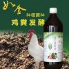 发酵床式养鸡