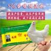 肽恩贝5%微生态蛋鸡预混料鸡饲料提高产蛋量和蛋鸡产蛋率