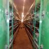 规模化养鸡设备|自动化养鸡设备|中州鸡笼