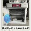 鸭蛋孵化设备_邢台孵化机_晨杰孵化