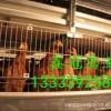 青年鸡.60天青年鸡,常年供应60-110天青年鸡