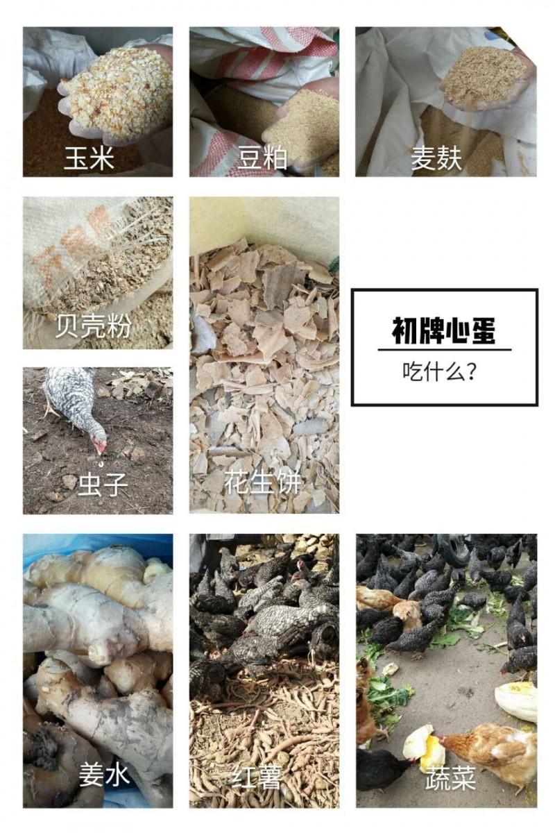 QQ图片20171204085245