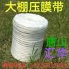 大棚压膜绳,温室大棚压膜带,养殖大棚压膜带