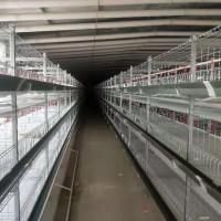 鲁兴农牧肉鸡笼3H-6108