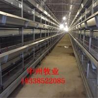 热销小层叠蛋鸡笼三层阶梯鸡笼全自动清粪机设备