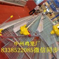 供应四层层叠肉鸡笼三层阶梯式鸡笼定做批发