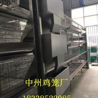 养鸡设备全自动鸡笼清粪机喂料机捡蛋机批发定做